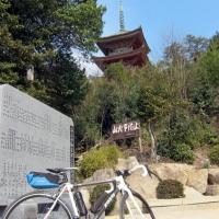 向上寺の国宝三重塔