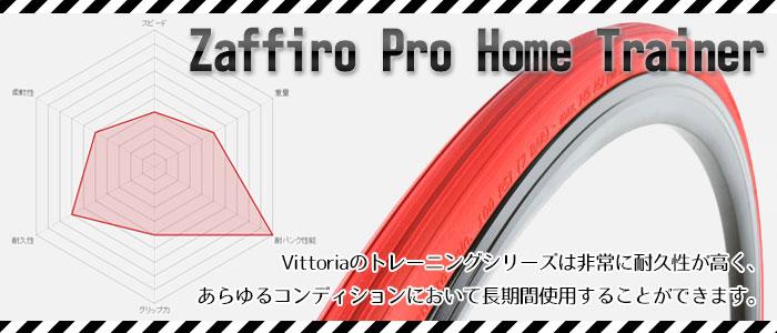 ZAFFIRO PRO HOME TRAINER