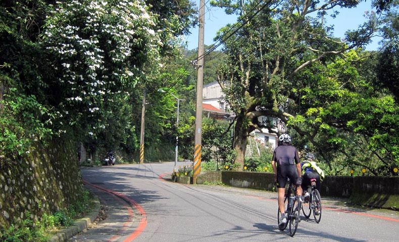 陽明山 サイクリスト